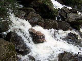 Zuiddam St Columba Falls021